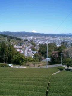 image/ippojapan-2006-04-03T20:15:45-1.JPG