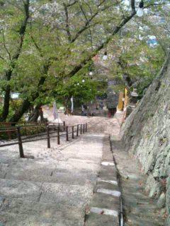 image/ippojapan-2006-04-18T16:56:46-1.jpg