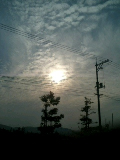 image/ippojapan-2006-05-14T20:18:55-2.jpg